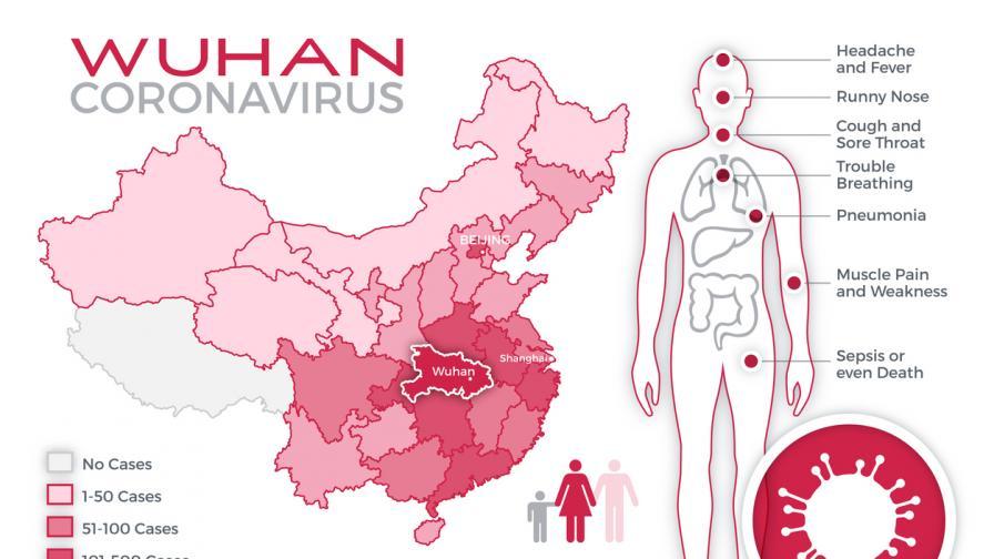 Ето откъде СЗО смята, че е тръгнал коронавирусът