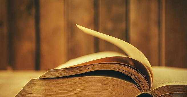 Наричат я най-старата книга в света: твърди се, че загадъчната