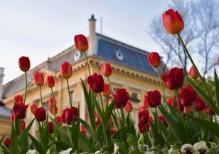 141 години откакто София е столица на България