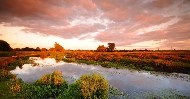 По-голямата част от подпочвената вода на Земята е дъждовна вода.