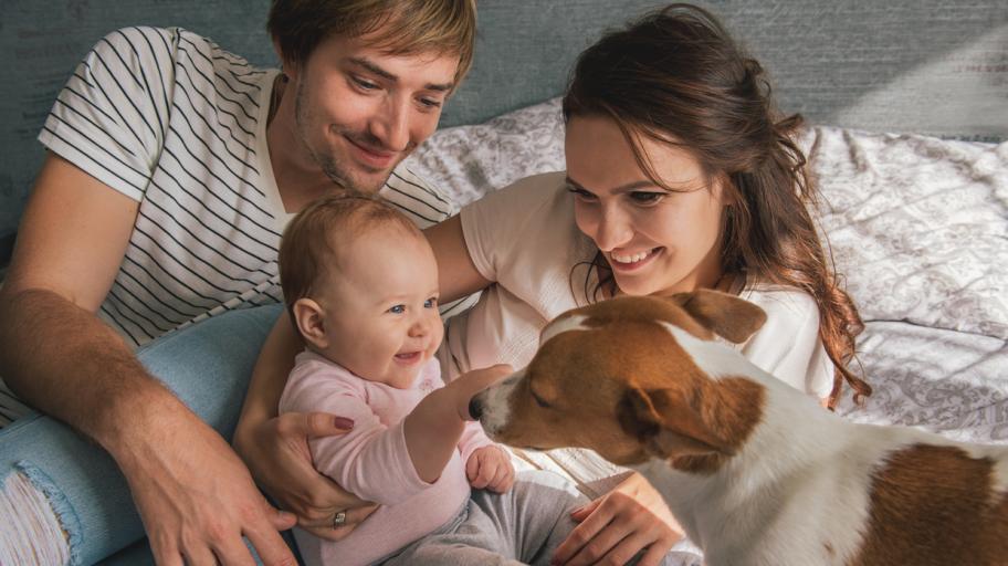 Как да подготвим домашния любимец за бебето вкъщи