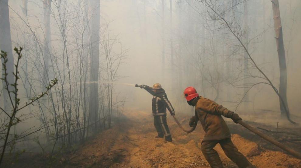 Почти 2000 спасители гасят горски пожари в Украйна