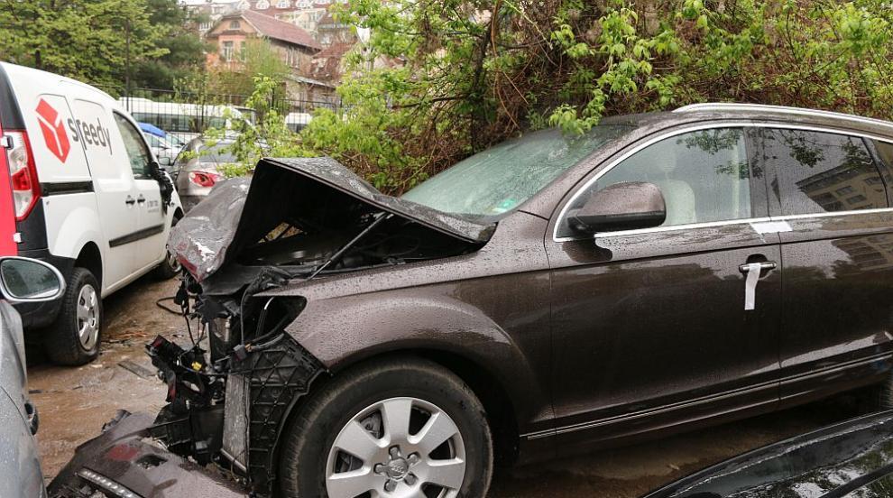Шефката на СГП: Катастрофата с Милен Цветков е...
