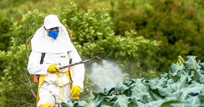 Община Шумен уведомява собствениците на пчелни семейства, че фирми ще