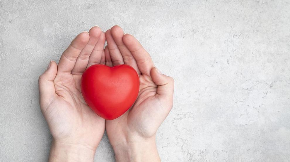 Създадоха първия в света атлас на човешкото сърце...