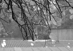 Жълт код за валежи е в сила за сряда