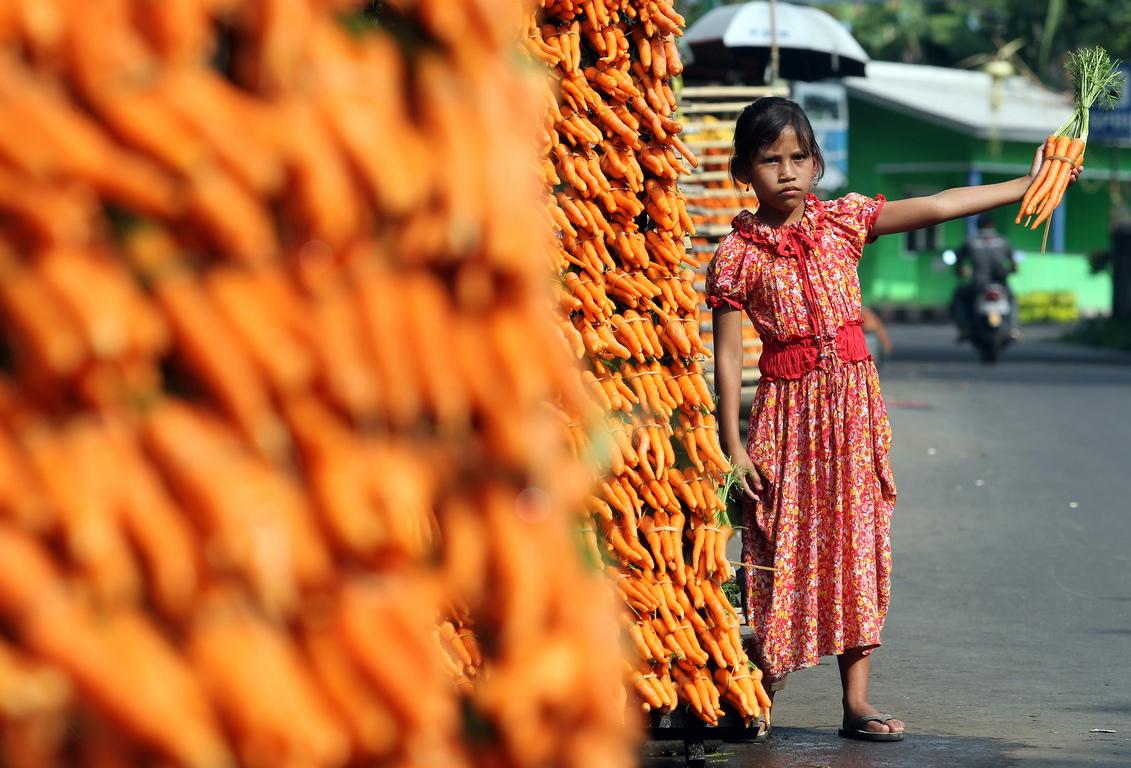 <p>Като цитрусов цвят, оранжевия цвят е свързан със здравословна храна и стимулира апетита. Много ефективен е за насърчаване продажбите на хранителни продукти и играчки.</p>