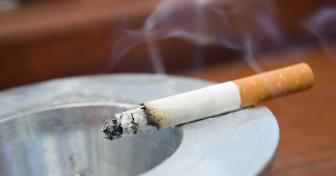 България Забрана за продажба на ментолови цигари в ЕС, с