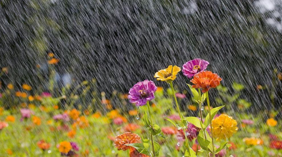 Слънце и летни дъждове в неделя