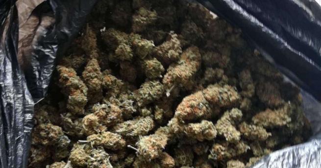 900 г марихуана и крупна парична сума са иззети при