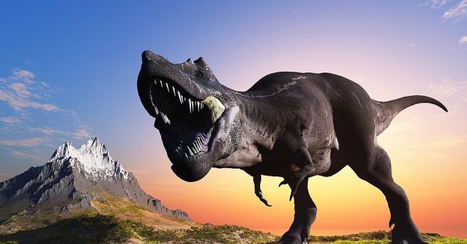 Останки от неизвестен вид малки месоядни динозаври, живели преди 90