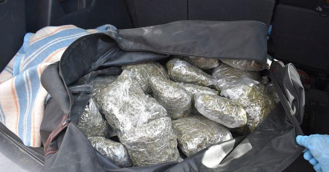 6 килограма канабис са иззети при спецакция на полицията в