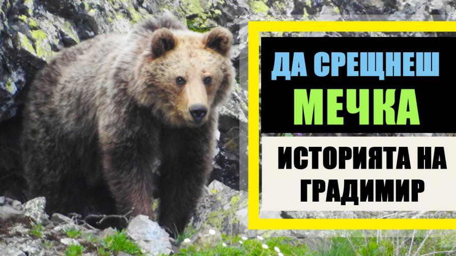 Да срещнеш мечка в гората – историята на Градимир Йовчев
