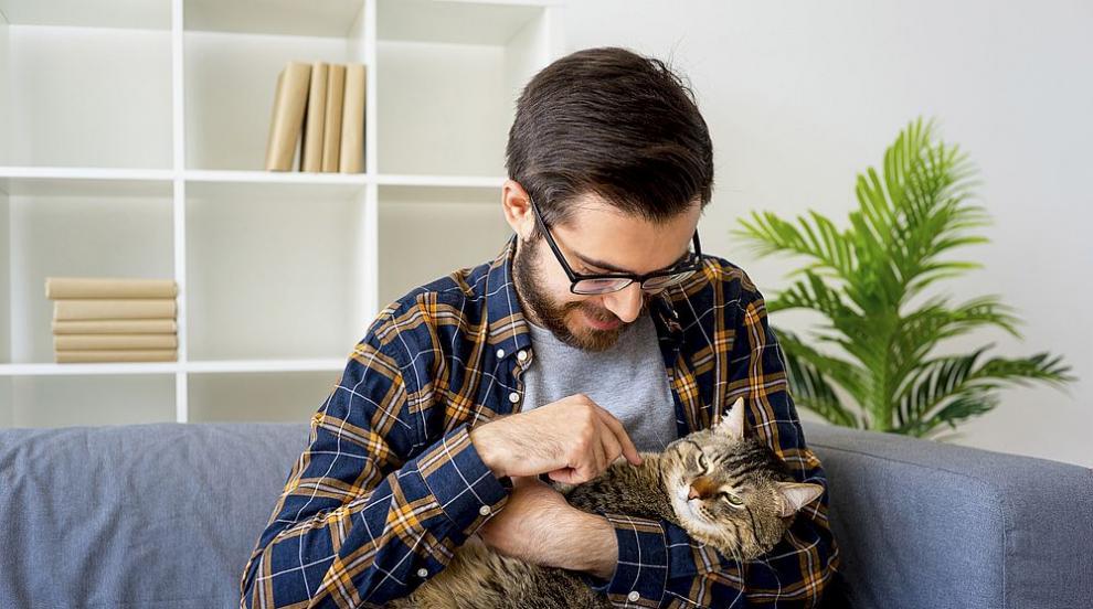 Мъжете, снимали се с котки, са с провалени шансове в...