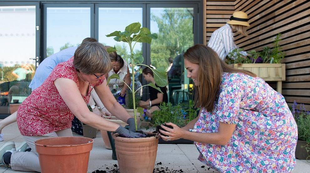 Херцогинята Кейт сади цветя с болни деца в Норич...