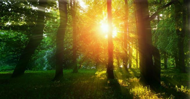 Утре над Източна България времето ще се задържи слънчево и