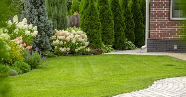 Искате ли тревата на поляната пред дома ви да остане