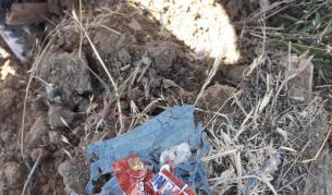 <p>Част от отпадъците в Червен бряг&nbsp;- внесени&nbsp;от Словакия и Румъния&nbsp;</p>