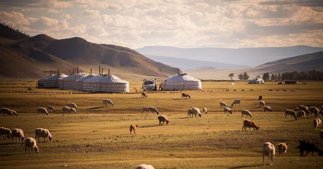 Властите в Монголия са регистрирали през изминалото денонощие два случая