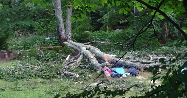 Двойна бука падна върху палатката с двама чешки туристи, които