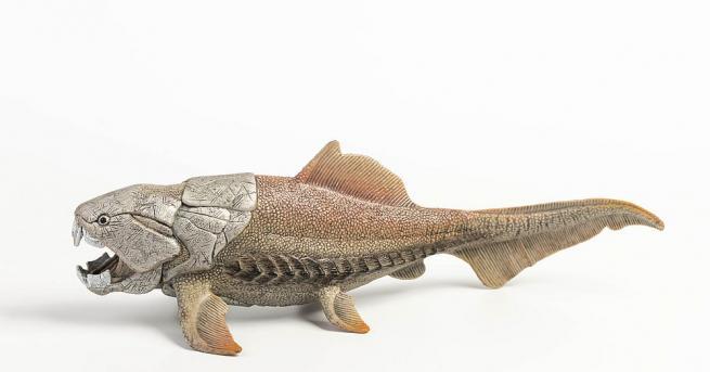 Аржентински палеонтолози откриха в Патагония фосил на гигантска риба, живяла