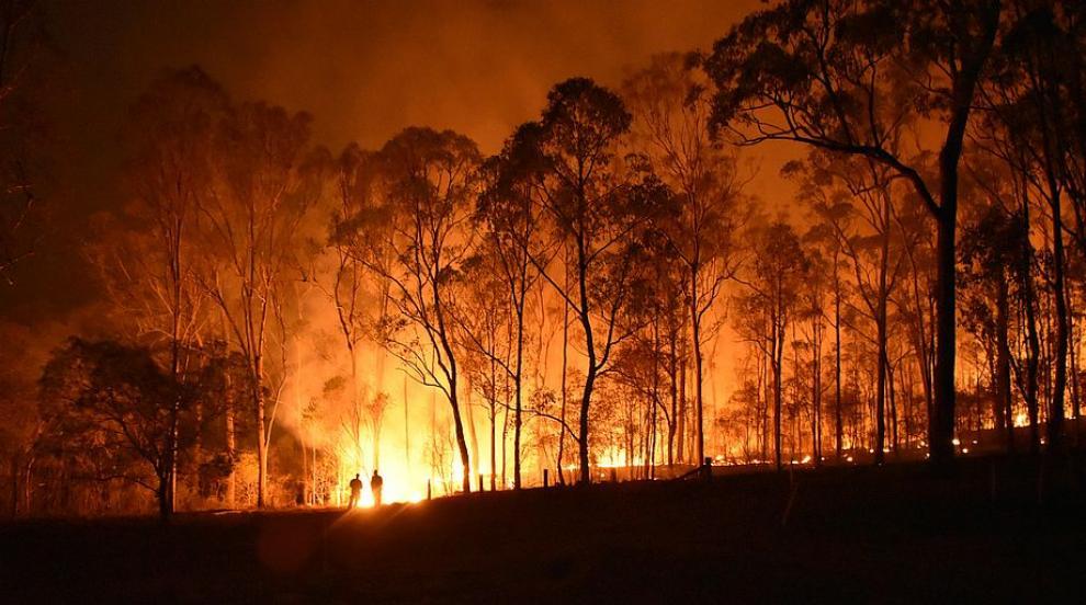 Пожар над село Горно Черковище (ВИДЕО)