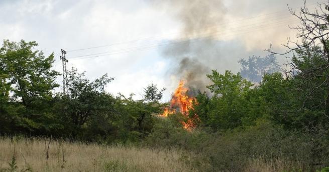 Пожар избухна на входа на село Рилци в 16.50 часа
