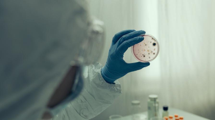 Установиха случай на бубонна чума в САЩ