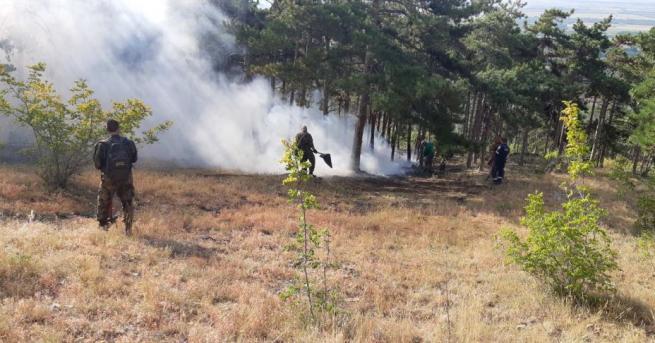 Сто и двайсет декара посеви са спасени от пожари от