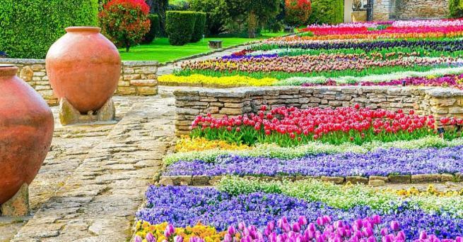 Университетската ботаническа градина в Балчик дарява на днешния си 65-и