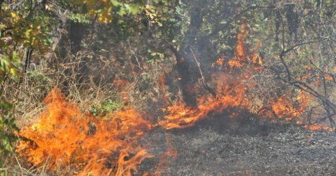 Локализиран е пожарът, който избухна вчера следобяд в землището на