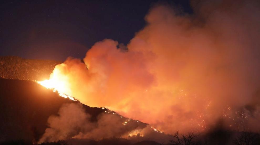 14 ранени при гасенето на голям горски пожар в...