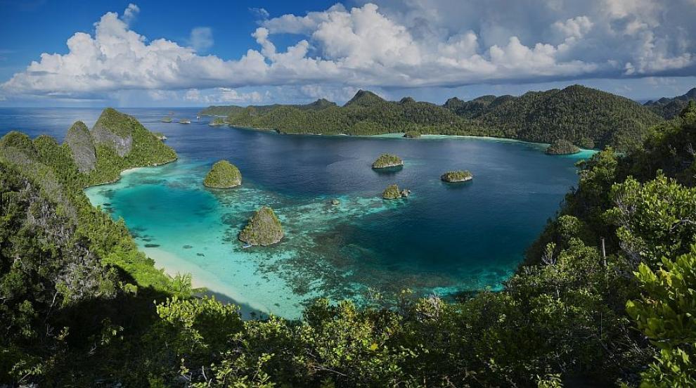 Райски остров крие най-голямото ботаническо...