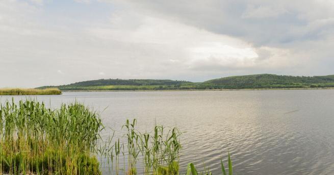 Възобновиха издирването на 13-годишното момче, изчезнало във водите на Дунав
