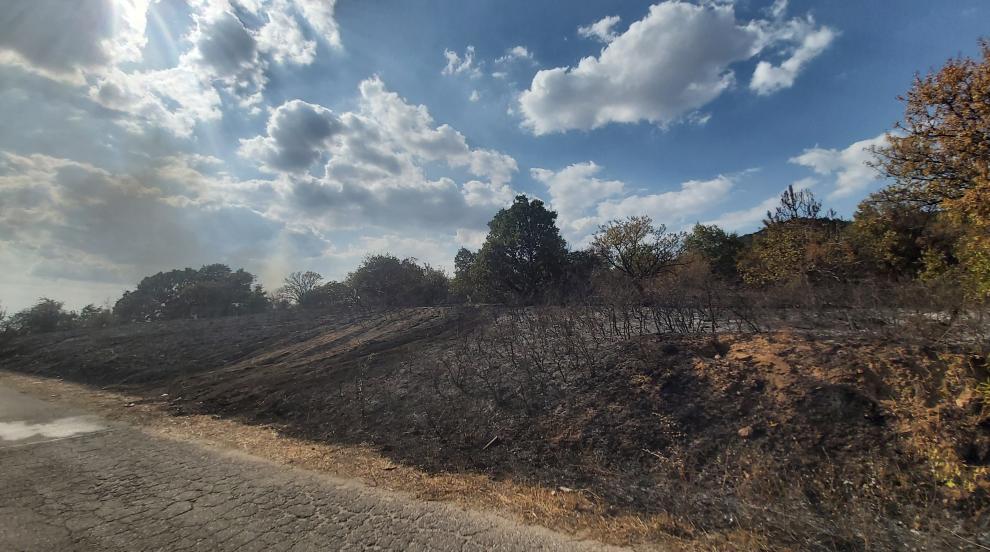 Голям горски пожар край Свиленград (СНИМКИ)