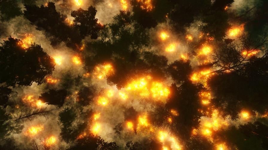 горски пожар