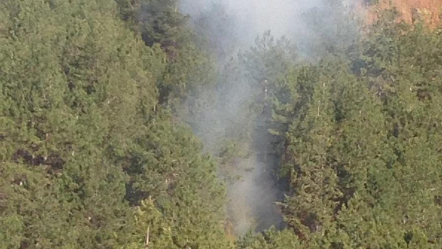 Полицията в Сливен задържа мъж за пожара край село Селиминово