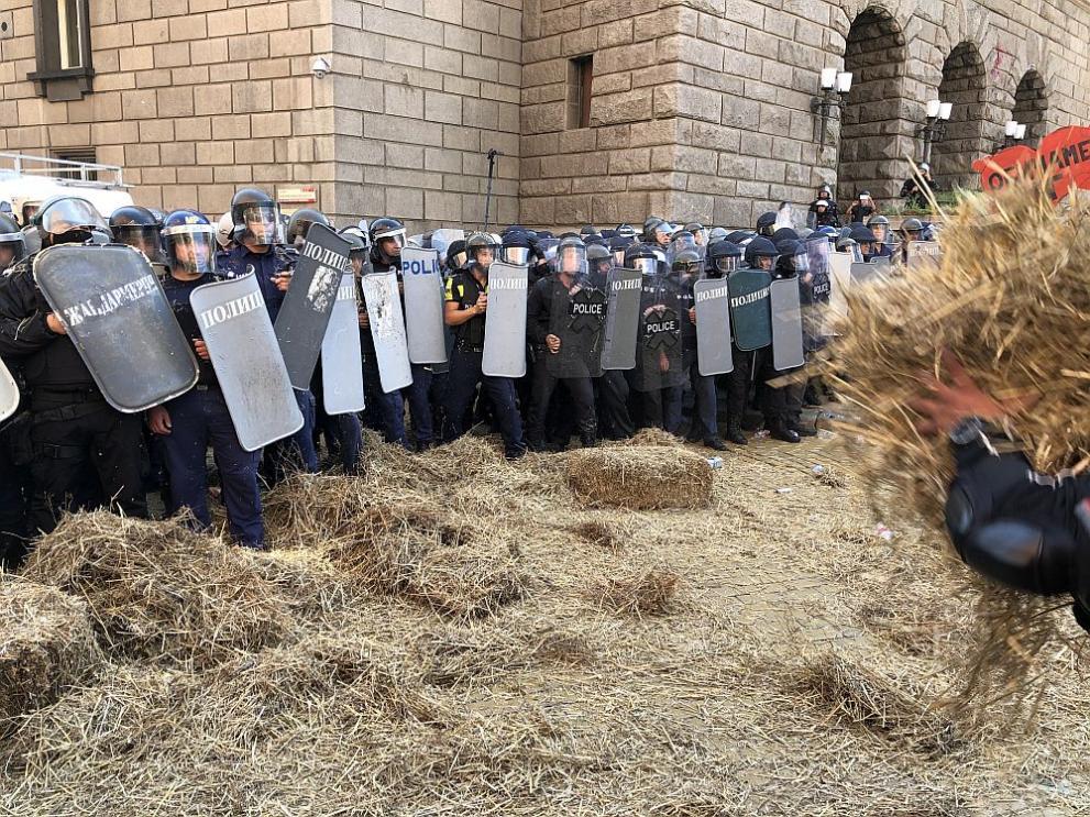 сено протест