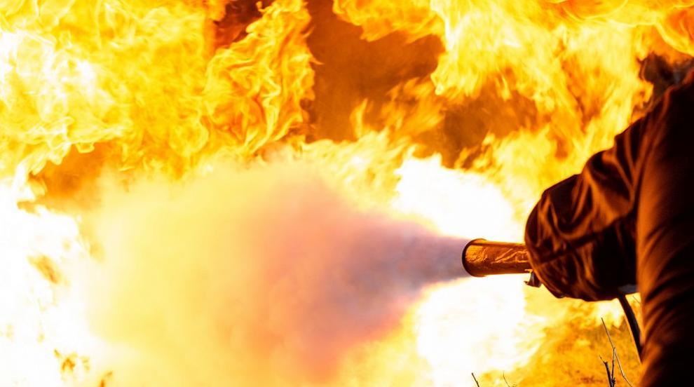 Трима загинали при пожар в Северна Калифорния (ВИДЕО)