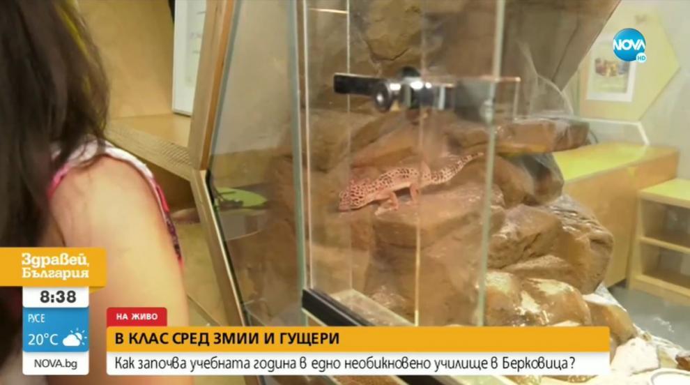 Със змии и гущери в първия учебен ден в Берковица...