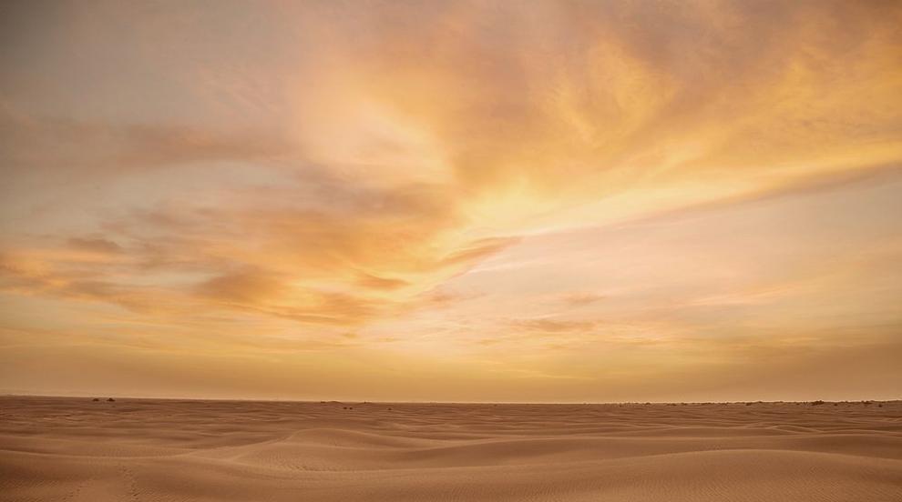 Откриха човешки стъпки на 120 000 години в Саудитска...