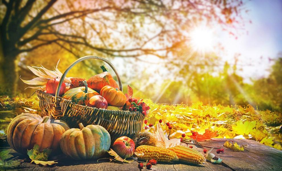 есен храна