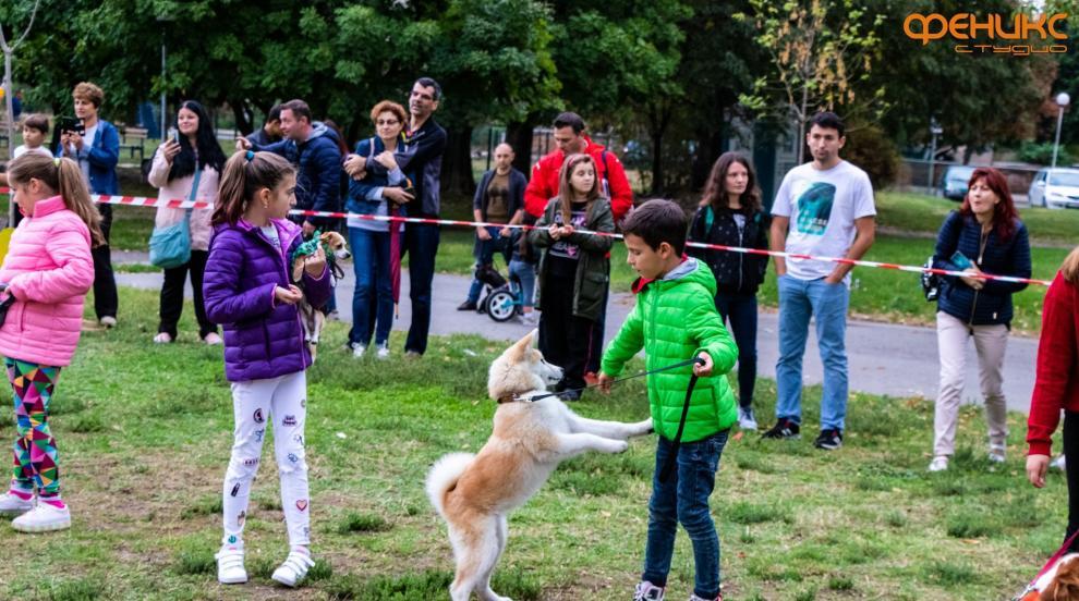Празник за деца и кучета в Деня на Стара Загора