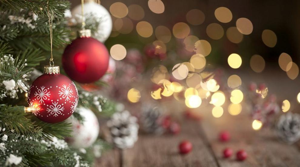 Коледната елха в Пловдив грейва тази вечер