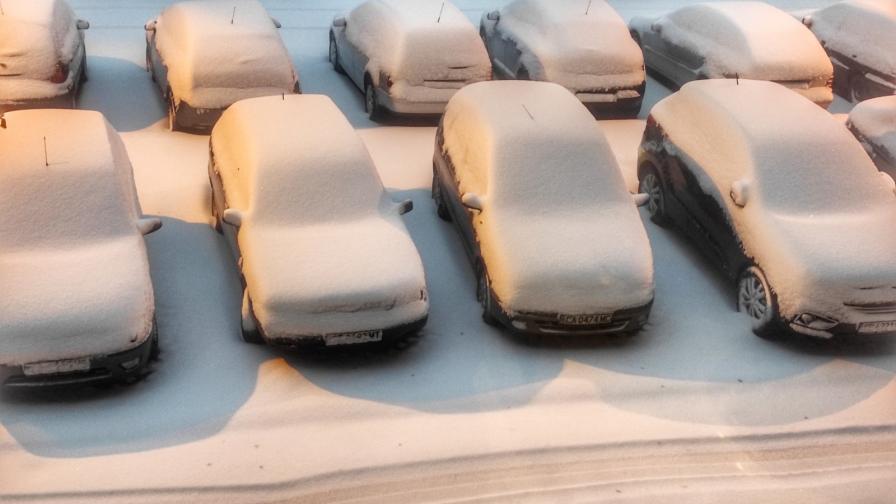 Вали първи сняг (снимки)