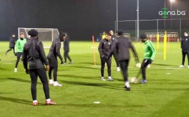 Лудогорец тренира преди гостуването на Антверп