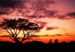 Климатичните промени погубват природните забележителности по света