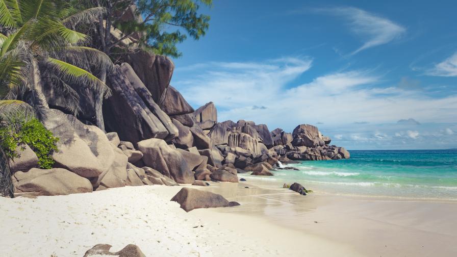Търсят киноман, който да гледа филми изолиран на самотен остров