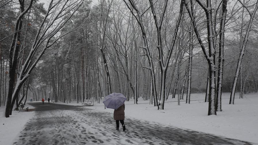 Снежна буря в София