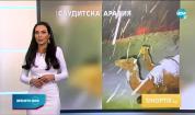 Прогноза за времето (19.02.2021 - обедна емисия)